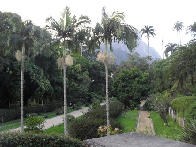 Foto do Jardim Botâncico