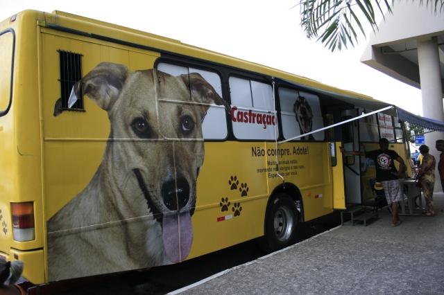 foto do Ônibus Busucão
