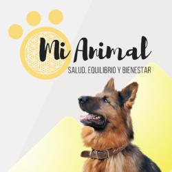 Mi Animal: Salud, Equilibrio y Bienestar